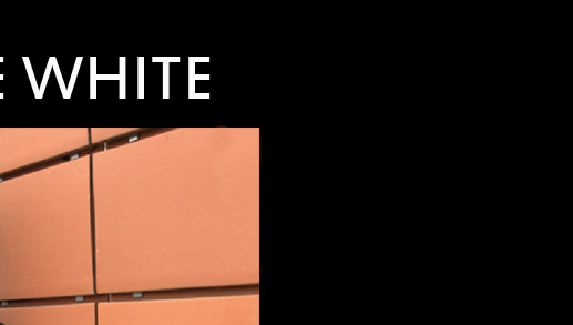Welcome to Freddie White's website